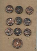 Member Of Hunting Society Of Yugoslavia.Serial 10 Pins.serial.animals.birds.sport - Badges