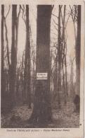 FORET DE TRONCAIS CHENE MARECHAL PETAIN 1941 - Autres Communes