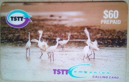 $60 Bird Remote - Trinidad & Tobago