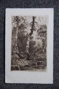 RARE - Gravure Sur CPA De L'Artiste Eugène VIALA (1859 - 1913) - Other Illustrators