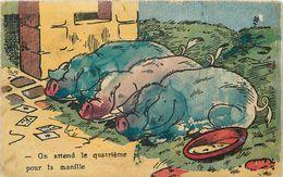 COCHONS -on Attend Le Quatrième Pour La Manille .(carte Colorée à La Main) - Cochons