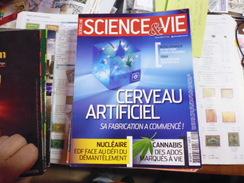 SCIENCE ET VIE N°1145 - Sciences