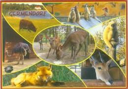Germendorf - Tier- Und Freizeitpark Eichholz (Erdmännchen, Elenantilope, Rotfuchs,Gibbon) - Animaux & Faune