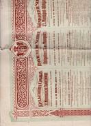 Actions & Titres Royaume De Serbie 1902 (Tapp 1) - Azioni & Titoli