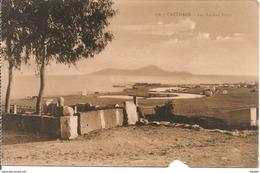 L103A832 - Tunis - Carthage - Les Anciens Ports - Lehnert Et Landrock N°156 - Tunisie