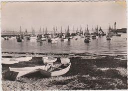 17 Ile D'oleron La Cotiniere Le Port  Vue Generale - Ile D'Oléron