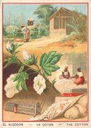 Chromo El Algodon Le Coton (animée)  PO 213 - Chromos