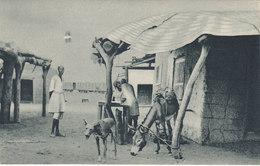ERITREA  - AFRICA ORIENTALE -  Colonia Italiana - A.O.I. /  Vita E Costumi Della Popolazione - Eritrea