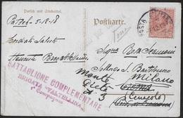 POSTA MILITARE - CARTOLINA ILLUSTRATA DA PATSCH DA MILITARE (AUSTRIA) 07.12.1918 - CENSURATA - Poste Militaire (PM)