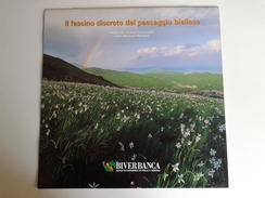 Alt1025 Calendario Calendar, Calendrier 2004 Fascino Discreto Valli Biellese Biella Montagne Mountain Banca - Calendari