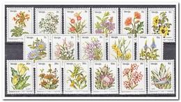 Venda 1979, Postfris MNH, Plants, Flowers - Venda