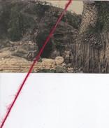 CP 07 -    JAUJAC   -  Magnifiques Coulées Basalmiques Aux Pieds Desquelles Coulent  Les Eaux Impétueuses Du Lignon - France