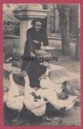 65 - LES PYRENEES---Attendant Le Marché--Marchande D'Oies--beau Plan - Breeding