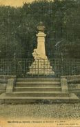88 - CPA Bruyères-en-Vosges - Monument Du Docteur Villemin - Bruyeres