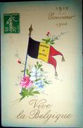GRANDE GUERRE BELGIQUE  CARICATURE PROPAGANDE VIVE LA BELGIQUE  GUERRE 1914/1918  DRAPEAU NATIONAL - War 1914-18