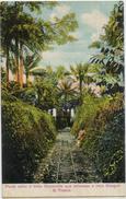 SAO TOME PONTE VELHA E LINHA DECAUVILLE ROCA GUEGUE - Sao Tome And Principe