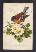 CPA Illustrée Par C. KLEIN (signature En Haut à Gauche) Oiseau Sur Branche D'églantier Rose Sauvage - Klein, Catharina