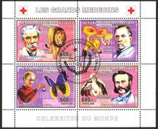 {CN10} Congo 2006 Medicine Mushrooms Lions Butterflies Sheet Used / CTO - República Democrática Del Congo (1997 - ...)