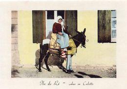Ile De Ré Animée âne En Culotte Ane - Ile De Ré