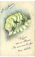 Bonnet De SAINTE CATHERINE - Carte Peinte à La Main - Sainte-Catherine
