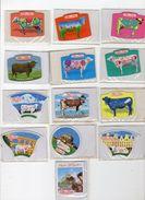 Jan18    80812   Lot De 13 Magnets  Elle & Vire - Animals & Fauna
