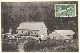 Souvenir De  STRAESSEL - Entre Kruth Et Ventron  - Prop. Jos. Schoffé  1924 - Saint Amarin