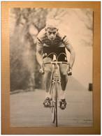 Willy De GEEST Rokado - Radsport