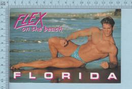 PIN UPS BOYS - FLORIDA ON THE BEACH -  SEXY MALE - MODEL GAY INTEREST PHOTO DAN PETERSON - Pin-Ups