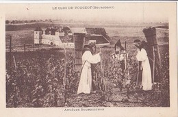 Le Clos De Vougeot  Angélus Bourguignon - France