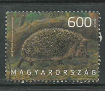 Hongarije Yv  Uit Blok 340 Jaar 2013, Hele Hoge Waarde, Gestempeld, Zie Scan - Oblitérés