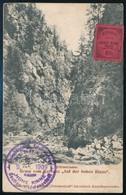 1909 Hohe Rinne Bélyeg Címzetlen Képeslapon - Stamps