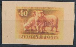 1951 Erdei állatok 40f Fogazatlan Próbanyomat Kartonpapíron. Ebben A Formában Ismeretlen! - Stamps