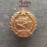 Badge (Pin) ZN006327 - Omladinaska Radna Akcija (Youth Work Action) Prostovoljno Delo Yugoslavia Slovenia 1948 - Badges