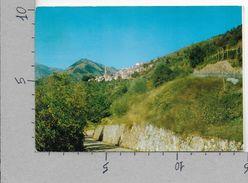 CARTOLINA VG ITALIA - ANDAGNA (IM) - Valle Argentina - Panorama - 10 X 15 - ANN. 1970 - Imperia