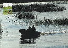 D32308 CARTE MAXIMUM CARD FD 2005 MOOI NEDERLAND - STEENWIJK NATUURGEBIED - DETAIL OP POSTZEGEL CP ORIGINAL - Steenwijk