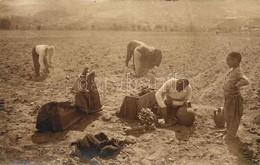* T3 Tobacco Plantation In Macedonia, Folklore, Photo (fa) - Postcards