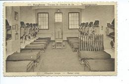 Hoogboom Kamer Troep - Kapellen