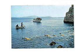 Cpm CALANQUE DE NIOLON - Centre De Plongée U.C.P.A. LE ROVE - Plongeurs Bateau - Nuoto