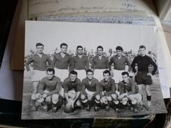 Football Fk Vojvodina Novi Sad - Deportes