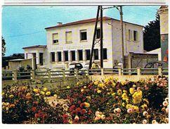 85...  NOTRE - DAME - DE - MONTS-1995  LA  POSTE    SUPER  ETAT - Autres Communes