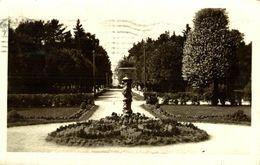 RPPC. Estonia EESTI NARVA TALLINN 1929 - Estonia