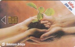 SERBIA - World Day Of Environmental Protection , 06/04, Sample No Control Number - Yugoslavia