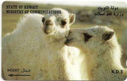 Kuwait - Young Camels - 39KWTB - 1997, Used - Kuwait