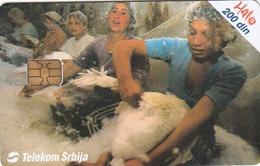SERBIA - Plucking Of Geese , 06/04, Sample No Control Number - Yugoslavia