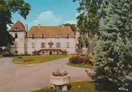 21 - CREANCEY  -  Château ,  -  105x150 , Glacée - France