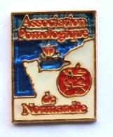 Pin's ASSOCIATION POMOLOGIQUE DE NORMANDIE - Carte De La Normandie - Pomme - Drakkar - CES - G1146 - Associations