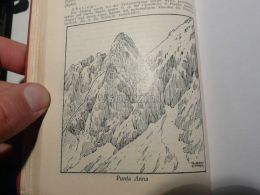 Sexten Dolomites Sextner Dolomiten Punta Anna GIUSEPPE OLIVIERI VIA FERRATA Italy Austria Map Mappa Karte 1928 - Carte Geographique
