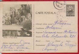 SWANS BIRD BIRDS  ROMANIA POSTAL STATIONERY 1962 - Swans