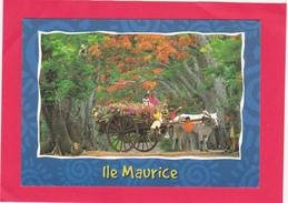 Modern Post Card Of Ile Maurice,Mauritius,B31. - Mauritius