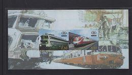 Belgie - Belgique TRV-BL13 ONGETAND - Railway